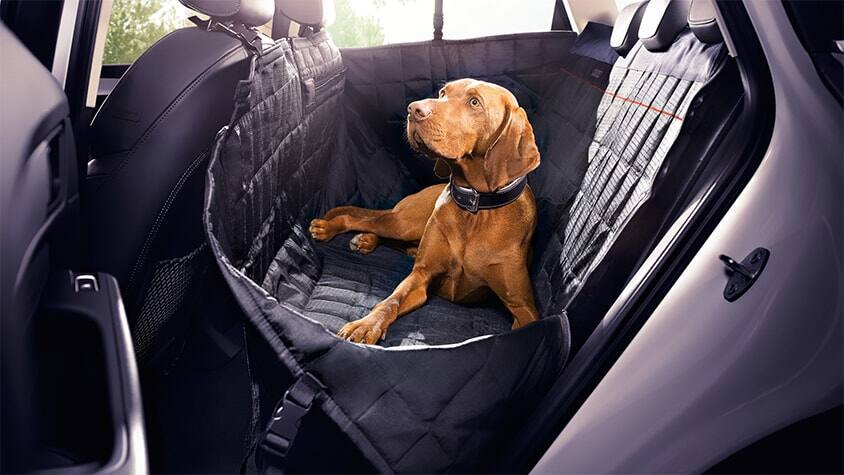 Dog rear seat cover