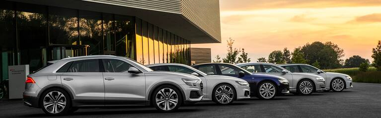 Audi family parked in front of a sunset.