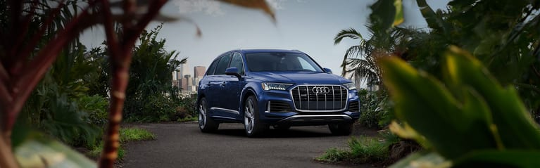 Parked Blue Audi Q7 in floral background.